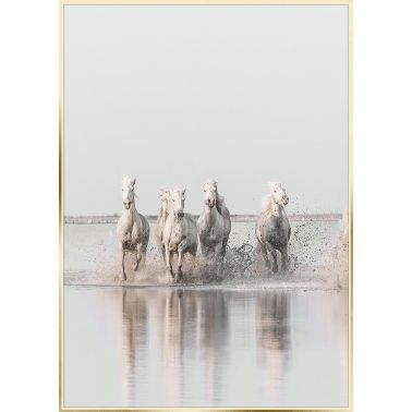 TABLOU 50X70 CM, HORSE III