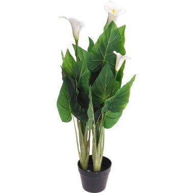 PLANTA DECOR CALLA LILY 100 CM, D 55 CM, VERDE/NEGRU/ALB
